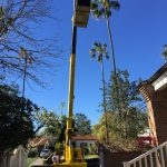Packaged Unit Repair Services and Installation In Los Angeles